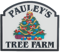 Pauley's Christmas Tree Farm in Braceville, Ohio.